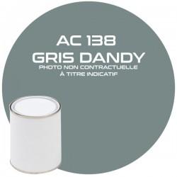 PINTURA AC 138 GRIS DANDY...